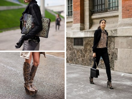 How to Wear the Snake Print Trend