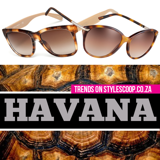havana-eye-wear-trend