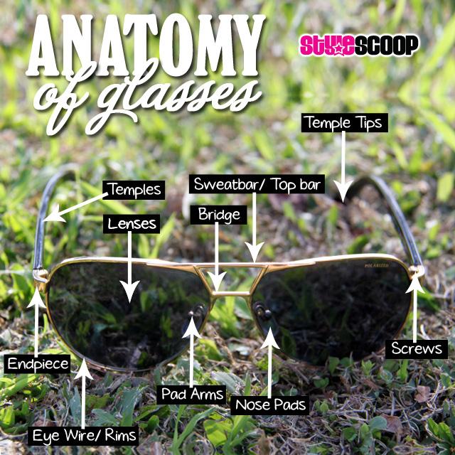 Anatomy of Sunglasses   Via www.stylescoopmag.com