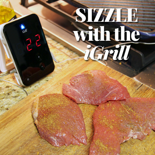Let's Get Grilling! iGrill Review