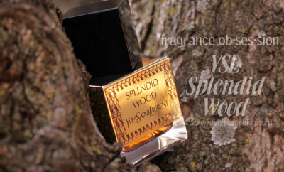 ysl-splendid-wood-fragrance-review-south-africa