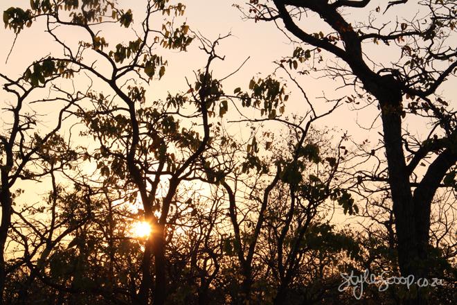 stylescoop-bush-adventure-sunset