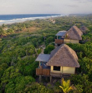 Mozambique – A foodie's paradise
