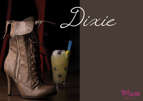 Dixie Boots – The wear with anything boots