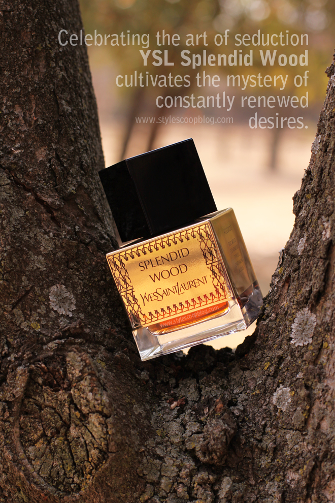 ysl-splendid-wood-fragrance-review-south-africa-cultivates-the-mystery-of-constantly-renewed-desires