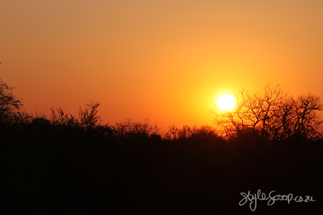stylescoop-bush-adventure-sunset2