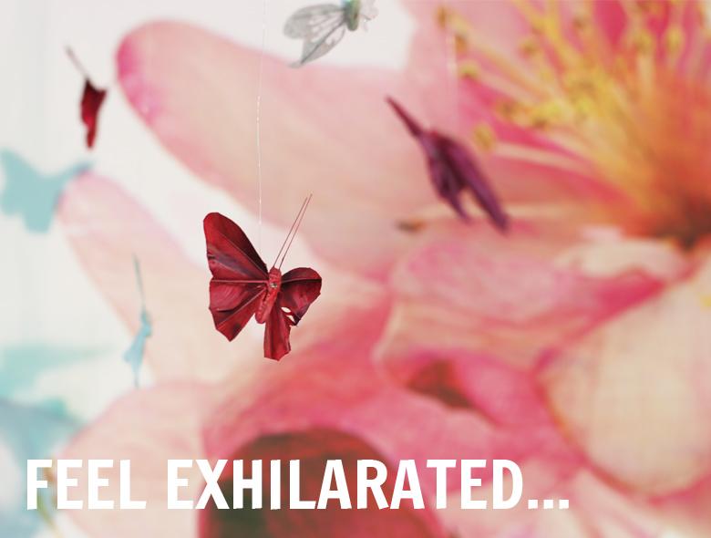 glade-secrets-feel-exhilarated