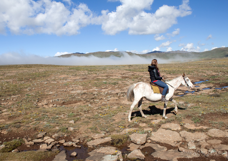 lesotho-sani-pass-adventure-blog-lifestyle-south-africa-stylescoop---horse-back-riding